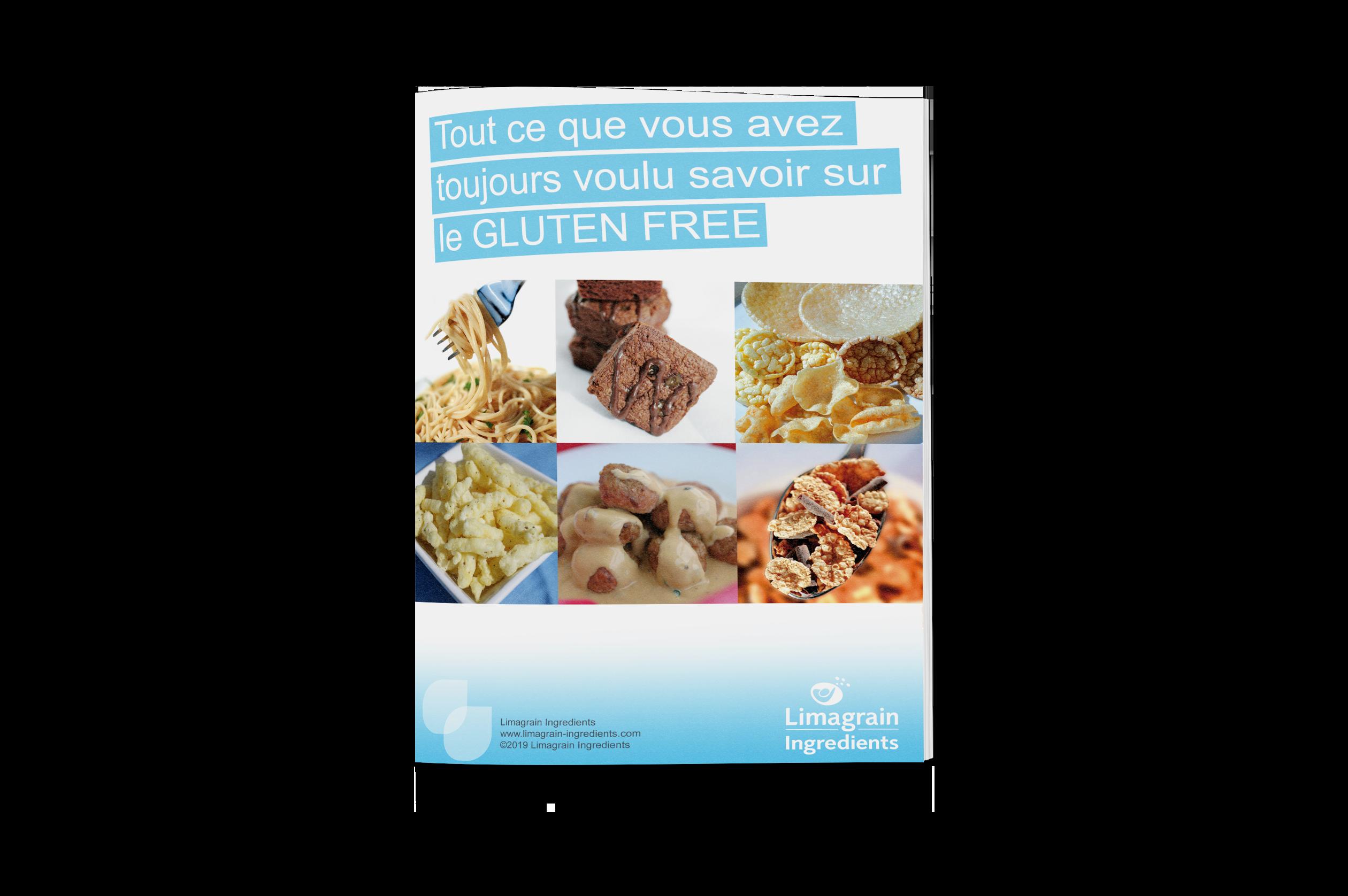 2906_ebook_gluten_free_mockup_FR_ressources