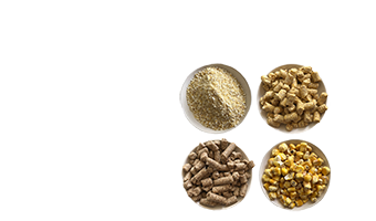 Puffed_grains_alimentation_animale
